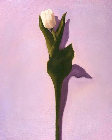 Beautiful solitary white tulip on a lavender background. This is an original oil painting, rendered on canvas, by Linda Boucher