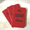 My Secret Diary Red Moleskine Notebook by Linda Boucher