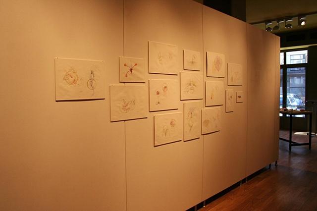 The Lingula Project, drawings