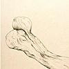 A bone