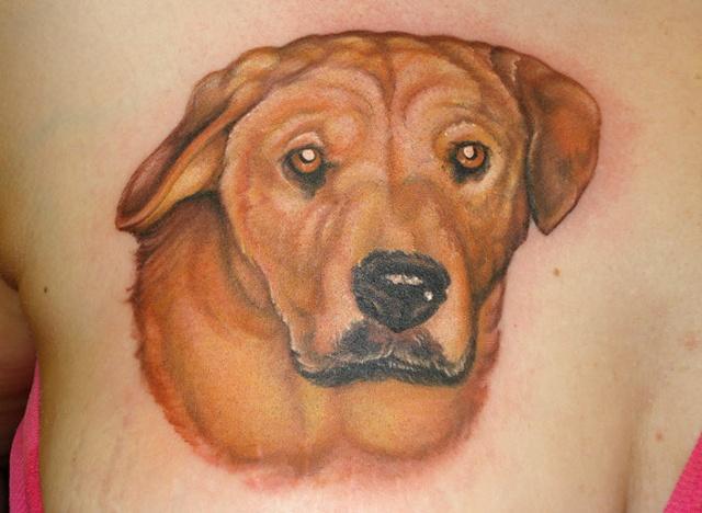 B.A.D. dog