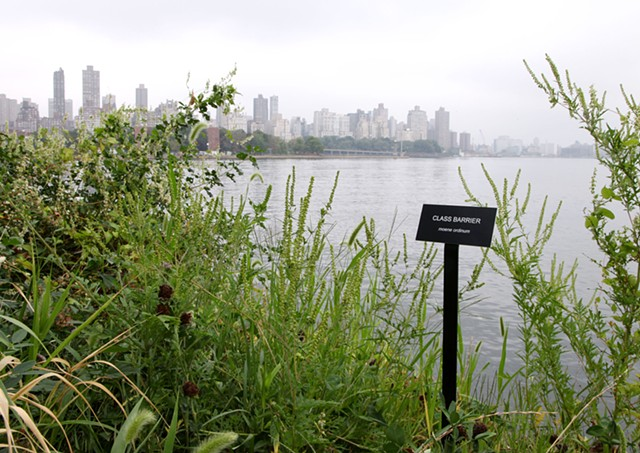 Class Barrier (moene ordinum)  Selections From The Modern Landscape (installation view) Socrates Sculpture Park 2013