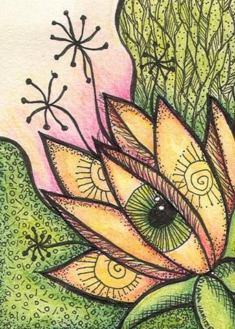 flower eye green growth yellow floral awakening