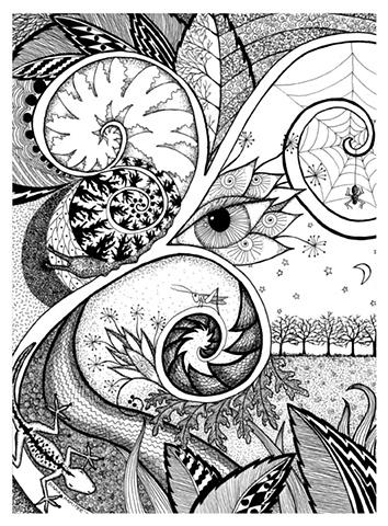 flower night snail cricket lizard flower spider web spiral trees moon