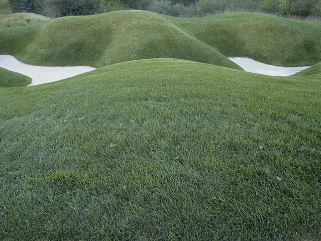 landscape intervention 5