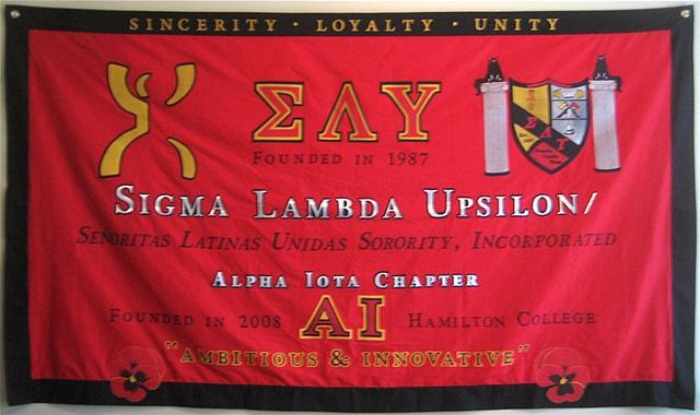 SLU - Alpha Iota Chapter Banner