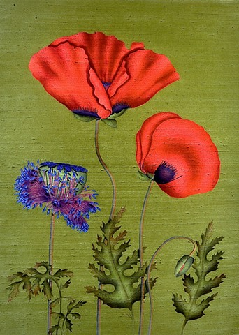 Poppies With Pod