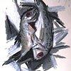 No. 18 (B) Vertical Fish