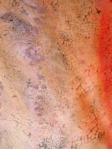 Terra No. 1 Detail