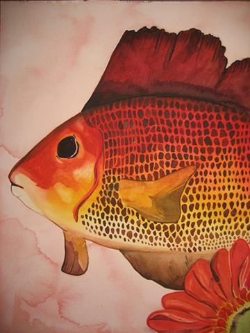 Fish - Still Life