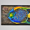 Queen Angel Fish - Auctioned off at a Castaways Against Cancer Event in May of 2012