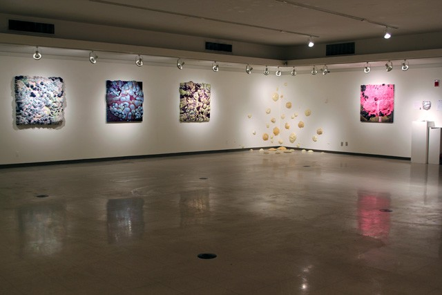 Gallery Installation View 2