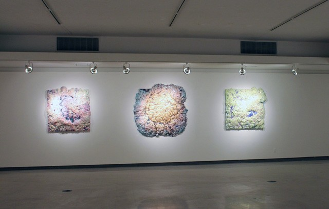 Gallery Installation View 1