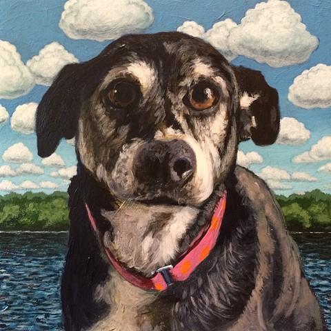 Matt Lively dog painting