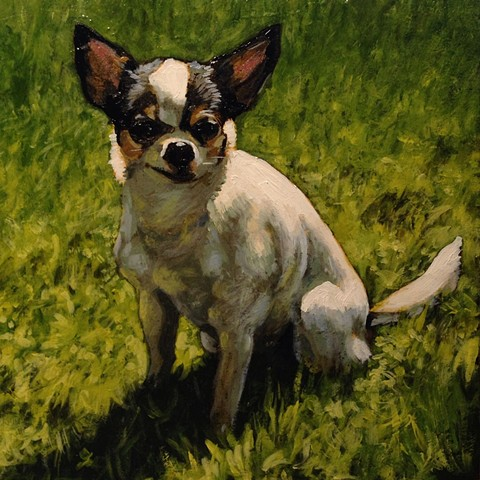 Matt Lively dog portrait