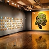 Flippo Gallery