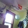 Little boy's room.