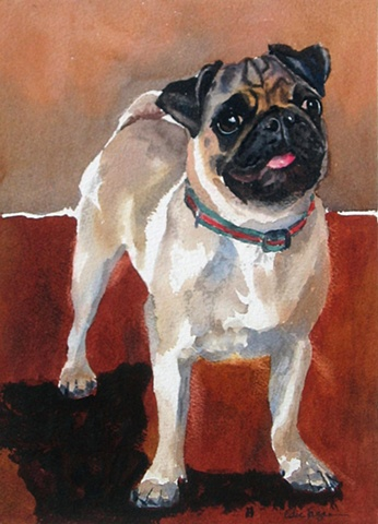 watercolor dog portrait by Edie Fagan Adored Dogs watercolor painting of dog watercolor painting of pug dog