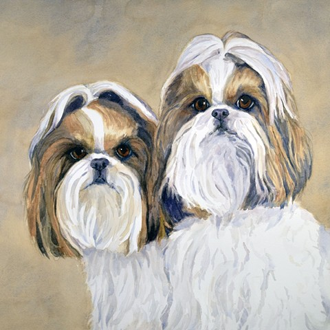 Two Shih Tzu watercolor painting by Edie Fagan pair of dogs portrait adored dogs