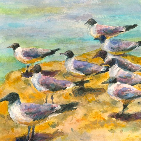 Watercolor and gouache painting of sea birds, gulls, by Edie Fagan