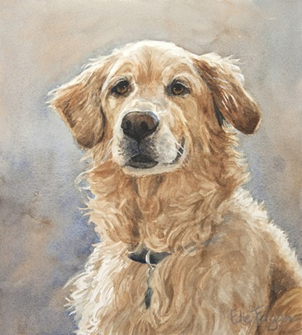 watercolor painting by Edie Fagan of Golden Retriever.  dog portrait, dog painting