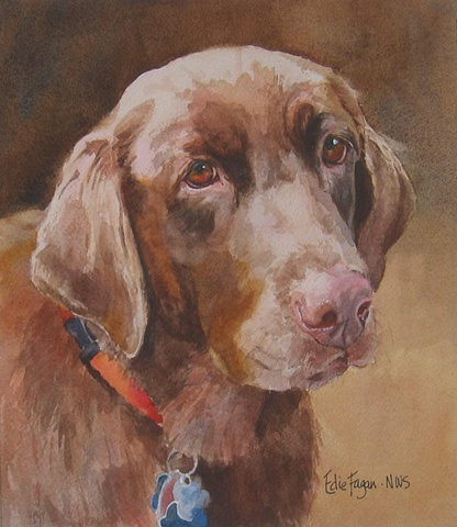 Edie Fagan Adored Dogs watercolor painting of dog watercolor painting of chocolate Labrador retriever dog brown Lab