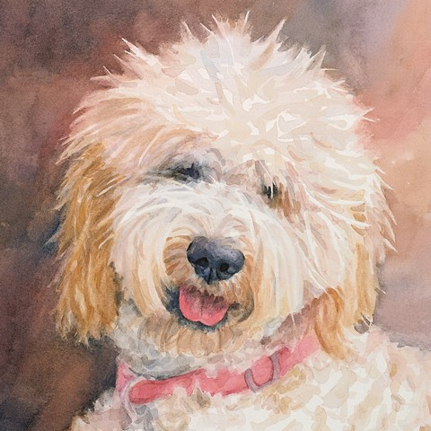 Goldendoodle watercolor painting dog portrait by Edie Fagan