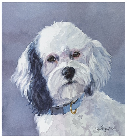 watercolor dog portrait by Edie Fagan Adored Dogs watercolor painting of dog Watercolor painting of Cockapoo mix dog