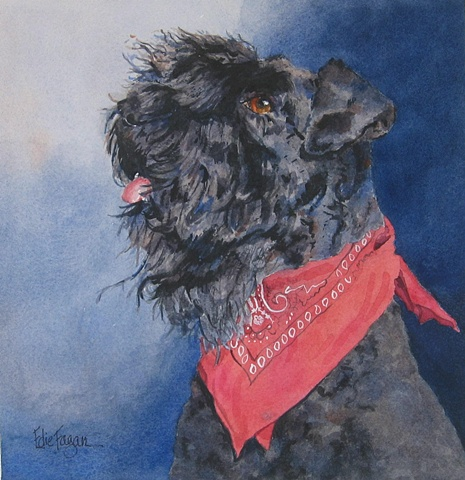 Edie Fagan Adored Dogs watercolor portrait of dog watercolor painting of Kerry Blue Terrier show dog therapy