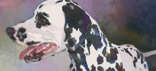 Edie Fagan Adored Dogs watercolor portrait of dog watercolor painting of dalmatian dog