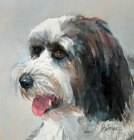 Edie Fagan Adored Dogs watercolor portrait of dog watercolor painting of Tibetan Terrier dog Havanese