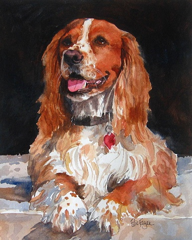 watercolor dog portrait by Edie Fagan Adored Dogs watercolor painting of English Cocker Spaniel dog