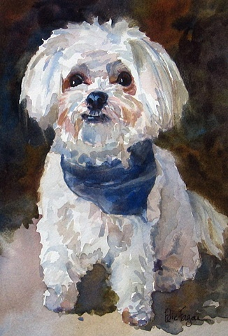 Edie Fagan Adored Dogs watercolor portrait of dog watercolor painting of Maltese dog