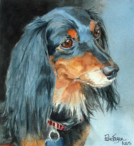 Edie Fagan Adored Dogs watercolor portrait of dog watercolor painting of longhaired dachshund dog long-haired