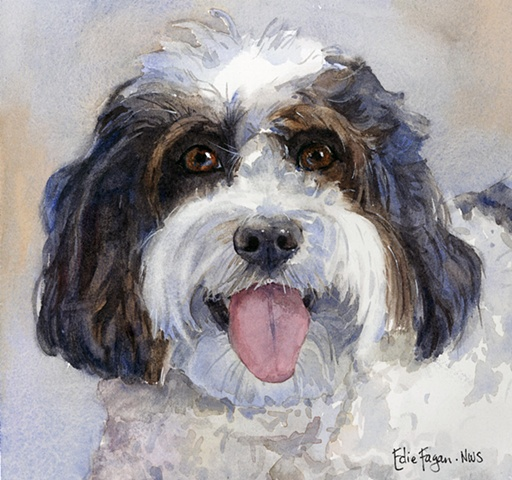 Edie Fagan Adored Dogs watercolor painting of dog watercolor painting of Daisy Dog mix