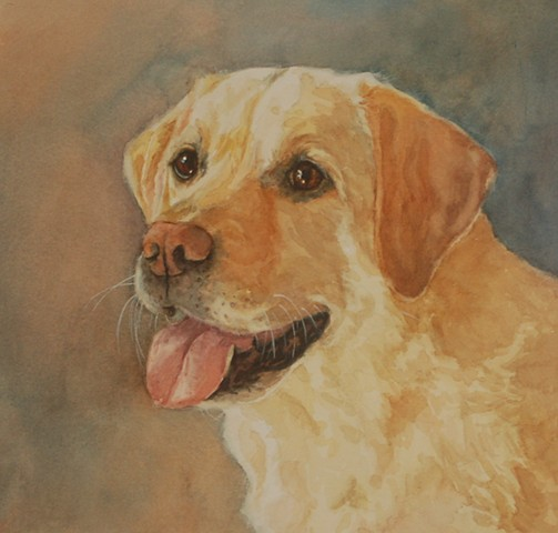 Labrador retriever dog watercolor painting by Edie Fagan Adored Dogs
