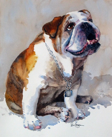 Edie Fagan Adored Dogs watercolor portrait of dog watercolor painting of English Bull dog bulldog