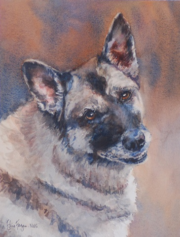 Edie Fagan Adored Dogs watercolor portrait of dog watercolor painting of German Shepherd drug sniffing dog