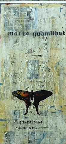 Alfredo Scaroina, artist, Contemporary art, conceptual art, arte cAlfredo Scaroina, artist, Contemporary art, conceptual art, arte contemporaneo, arte conceptual, domicano, dominican artistsontemporaneo, arte conceptual, domicano, dominican artists