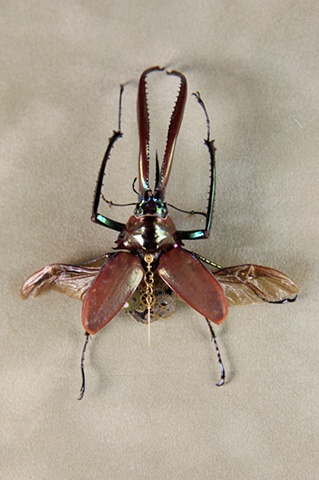 Jewel Like Stag Beetle Mechanical, Insect, Bugs, Gears, Steampunk, Steam Punk by Lindsey Bessanson