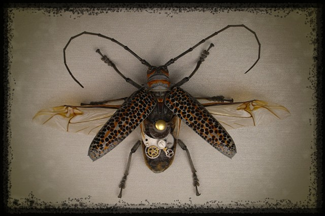 Orange, Green, Gray, Grey, Longhorn Beetle, Gears, Steampunk, Steam Punk, Insect, Bug, of Lindsey Bessanson, by Lindsey Bessanson