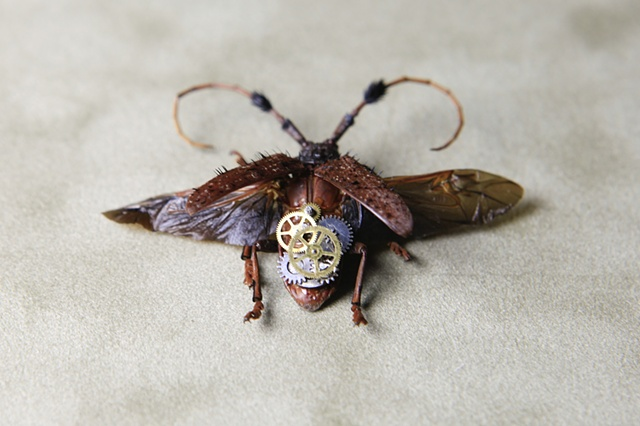 Fuzzy Steampunk Longhorn Beetle Mechanical, Insect, Bugs, Gears, Steampunk, Steam Punk by Lindsey Bessanson