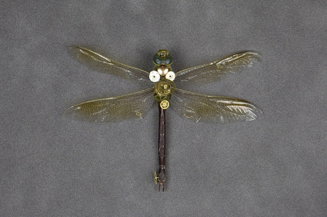 Steampunk Dragonfly Mechanical, Insect, Bugs, Gears, Steampunk, Steam Punk by Lindsey Bessanson