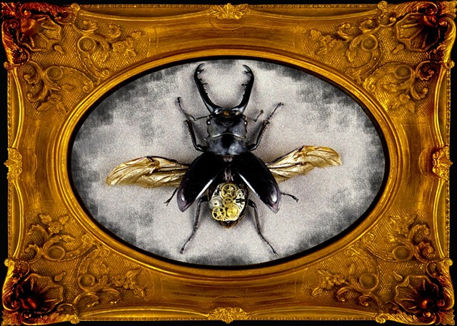 Beautiful Large Black Steampunked Beetle Mechanical, Insect, Bugs, Gears, Steampunk, Steam Punk by Lindsey Bessanson