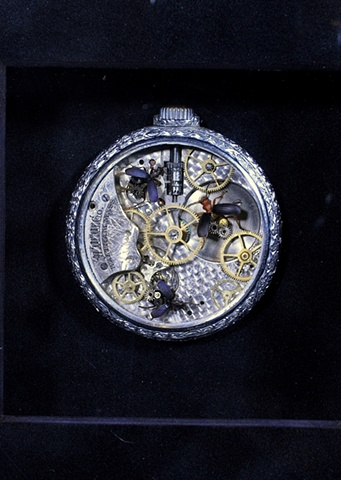 Have you ever wondered how your watch worked? Oddities, Side Show, Freak, Carnival, Carnivale, Mechanical, Insect, Bugs, Gears, Steampunk, Steam Punk by Lindsey Bessanson