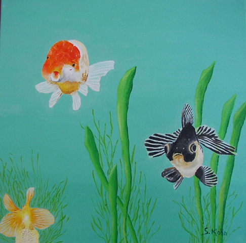 Goldfish No. 7