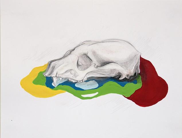 Skull Puddle