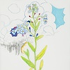 Forget-Me-Not Drawing 2