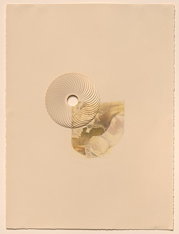 drawing of an object in the collection of the National Museum of Health and Medicine, laser-cut, twisted open
