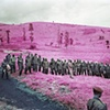 Richard Mosse Colonel Soleil's Boys (from the INFRA series) Edition of 5, with 1 AP